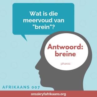 Die meervoud van brein is breine